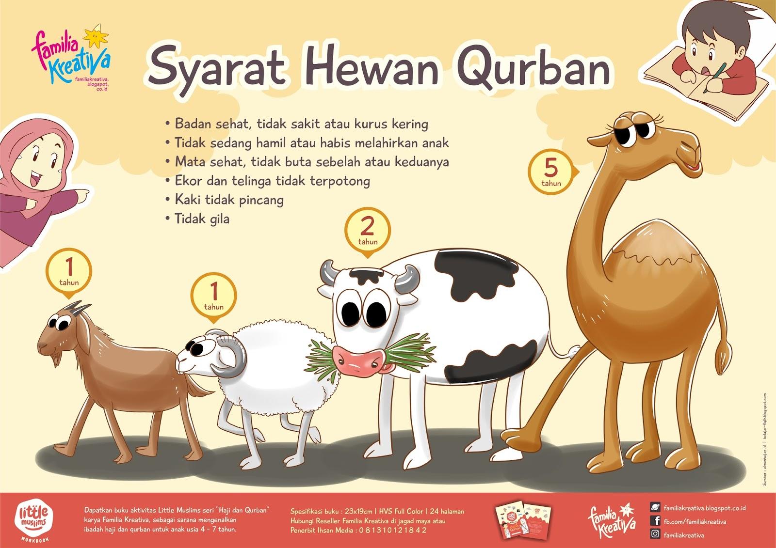 810 Gambar Hewan Untuk Qurban HD